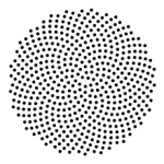 220px-SunflowerModel_svg